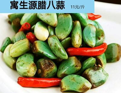黑龙江省哈尔滨市南岗区腊八蒜