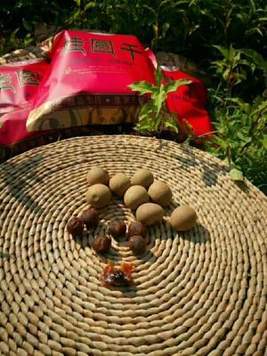 福建省漳州市平和县泰国桂圆干 一等 袋装 带壳