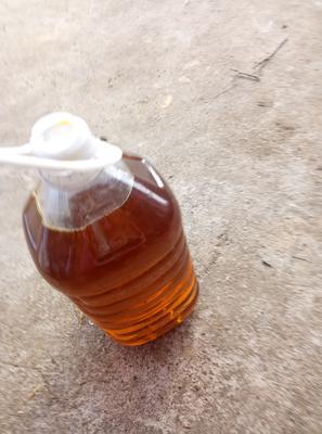 湖北省襄阳市宜城市自榨纯菜籽油