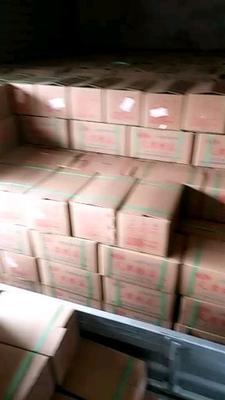 安徽省亳州市利辛县糖醋蒜