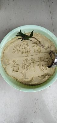 广西壮族自治区百色市田阳县铁皮石斛微粉