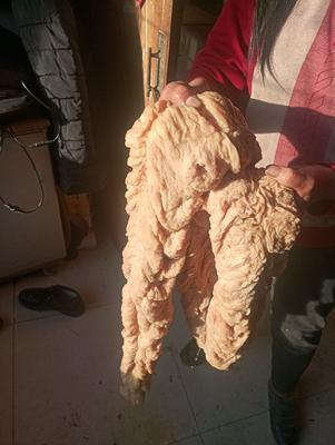 内蒙古自治区兴安盟扎赉特旗马肉肠子 散装
