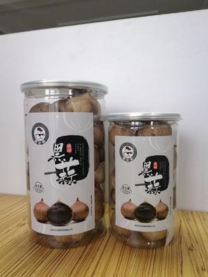 江苏省徐州市云龙区黑蒜 4.5cm以下 独头