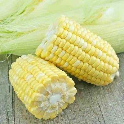 四川省眉山市东坡区正甜68玉米  带壳 甜 支持一件代发