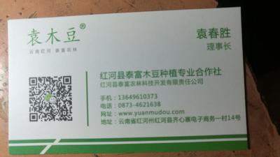 云南省红河哈尼族彝族自治州红河县木豆叶