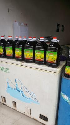 贵州省毕节市黔西县自榨纯菜籽油