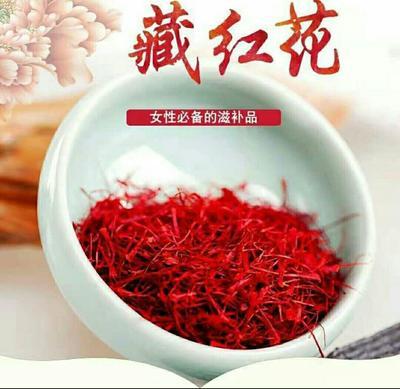 甘肃省酒泉市玉门市藏红花花丝