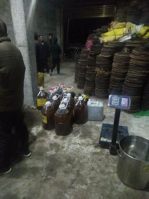 福建省福州市永泰县茶枯