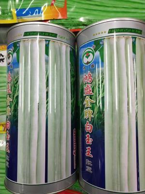 四川省成都市成华区白皮豆角种子  ≥95% 白玉王,400克