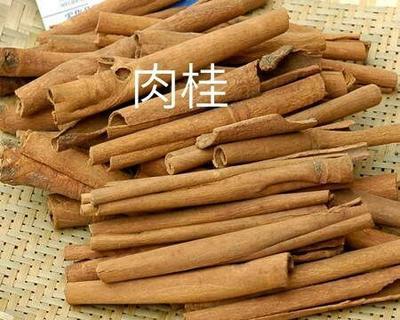 广西壮族自治区防城港市港口区烟仔桂