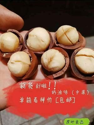 广东省广州市越秀区夏威夷果  (中颗)奶油味 包邮