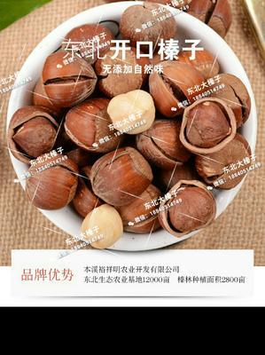 辽宁省丹东市振兴区榛子 6-12个月 包装