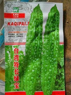 江苏省宿迁市沭阳县台湾特长绿宝苦瓜种子 袋装