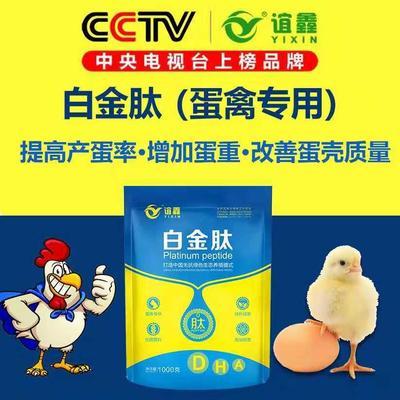河南省郑州市金水区蛋鸡增蛋饲料添加剂
