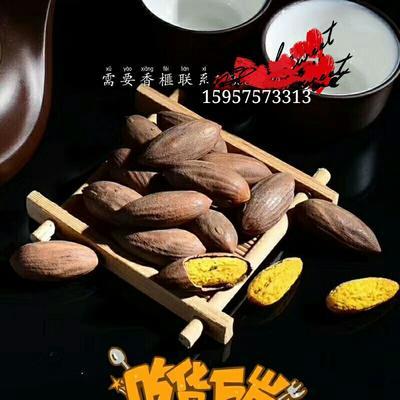 浙江省绍兴市柯桥区香榧 3-6个月 包装