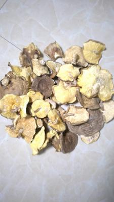 湖北省宜昌市远安县香菇片  1年以上 散装 袋料特级大片香菇