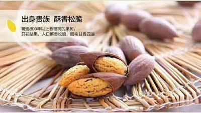 浙江省湖州市安吉县香榧 18-24个月 包装