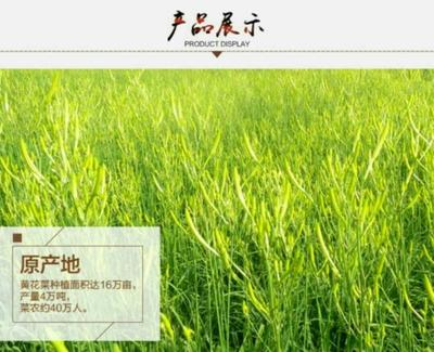 广东省深圳市宝安区祁东黄花菜 特级 袋装