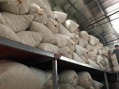 广东省广州市海珠区花菇干 箱装 1年