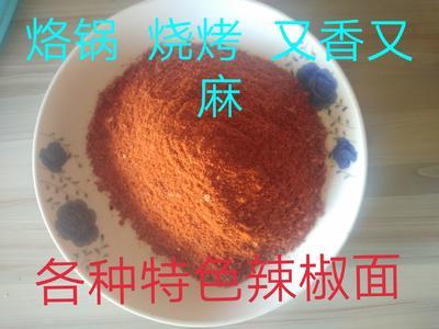 贵州省毕节市大方县烧烤辣椒面