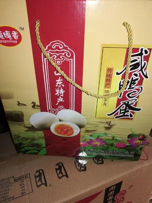 山东省济南市历城区青皮鸭蛋 食用 箱装