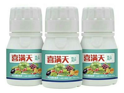 河南省郑州市上街区叶面肥