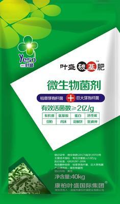 河南省郑州市金水区复合微生物菌剂  叶盛特种碳基肥