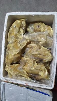 福建省龙岩市连城县鸡肉类 冷冻