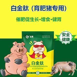 河南省郑州市金水区营养添加剂  猪快速催肥促长