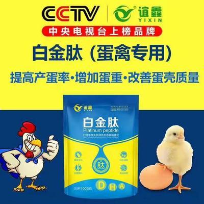 河南省郑州市金水区营养添加剂