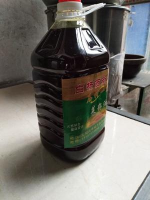 河南省洛阳市宜阳县自榨纯菜籽油