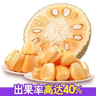 安徽省芜湖市南陵县红肉菠萝蜜 10斤以下