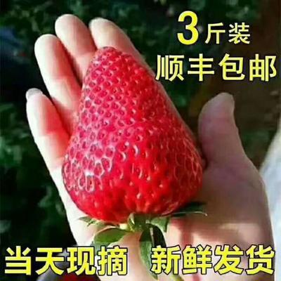 这是一张关于九九草莓  30克以上 九九草莓,香甜久久的产品图片