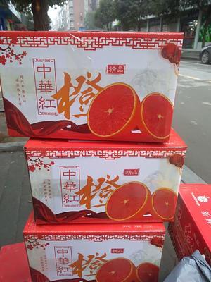 这是一张关于中华红脐橙 70-75mm 4-8两 的产品图片