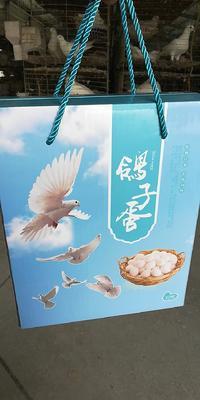 这是一张关于肉鸽蛋 食用 礼盒装 的产品图片