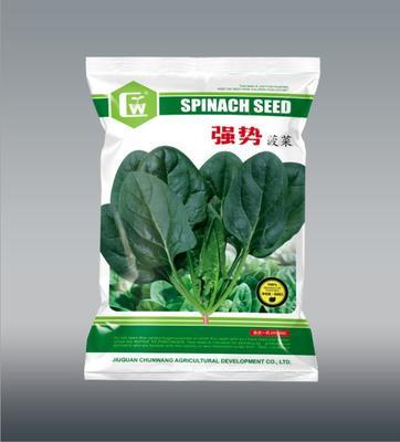 这是一张关于菠菜种子 大田用种 ≥90% 袋装 的产品图片