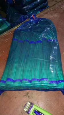 这是一张关于金乡红帽蒜苔 50~60cm 的产品图片