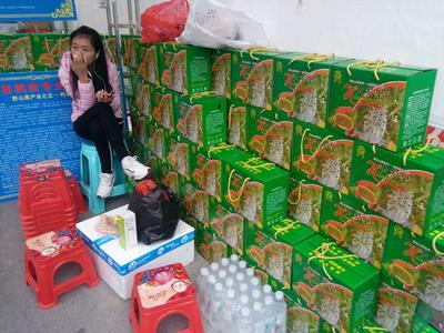 贵州省黔南布依族苗族自治州罗甸县火参果 0.3斤以上
