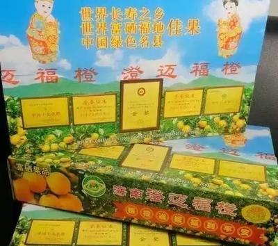 海南省海口市龙华区福橙 70-75mm 4-8两