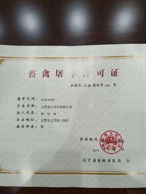 辽宁省朝阳市北票市外三元 200-300斤