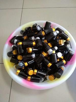 这是一张关于普洱乔木茶 特级 罐装 的产品图片