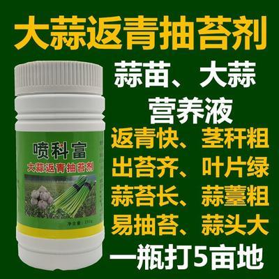 这是一张关于叶面肥  大蒜松口剂抽薹剂膨大的产品图片