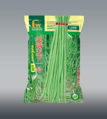 甘肃省酒泉市肃州区长青豆角种子 ≥90%
