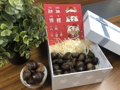 河北省秦皇岛市青龙满族自治县青龙板栗 特级 特选