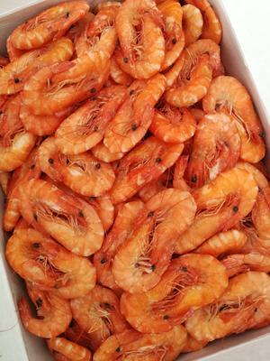山东省滨州市沾化区南美白对虾 人工殖养 7-9钱