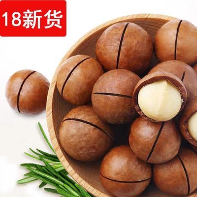 广东省广州市白云区夏威夷果  12-18个月 散装 今年新货
