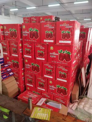 山东省临沂市兰山区红蛇果 400-500克