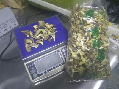 这是一张关于干平菇 散装 半年 的产品图片