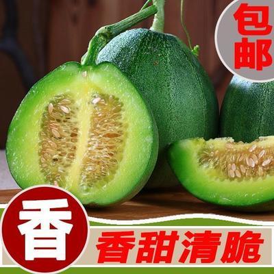 辽宁省沈阳市浑南区绿宝石甜瓜  现摘现发12个约7斤