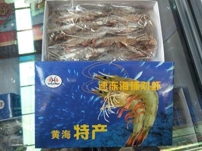 辽宁省丹东市东港市东方对虾 18头/斤